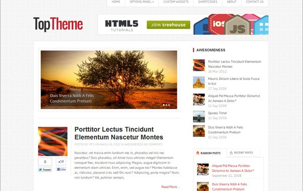 Top WordPress Theme