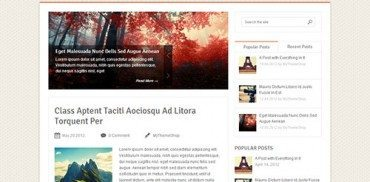SoftPress WordPress Theme