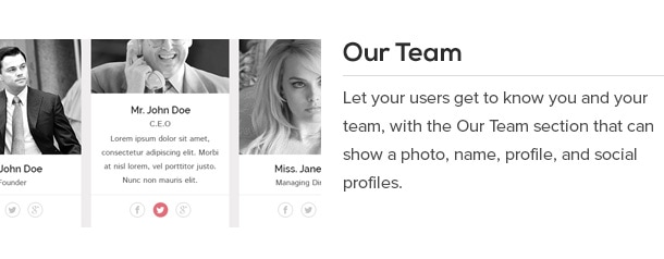 Let your users get to know you and your team, with the Our Team section that can show a photo, name, profile, and social profiles.