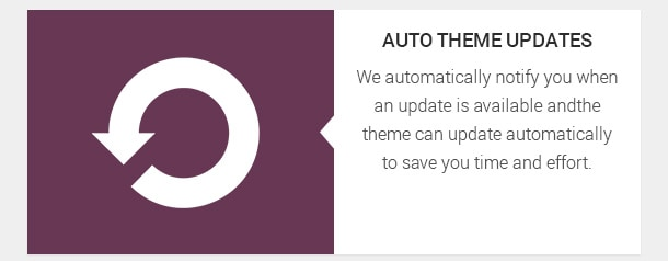 We automatically notify you when an update is available and the theme can update automatically to save you time and effort.