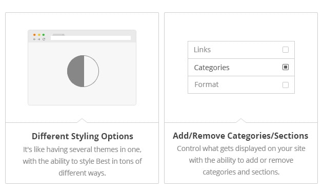 Different Styling Options - It's like having several themes in one, with the ability to style Best in tons of different ways. Add/Remove Categories/Sections - Control what gets displayed on your site with the ability to add or remove categories and sections.