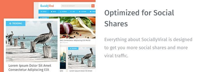 Optimized for Social Shares