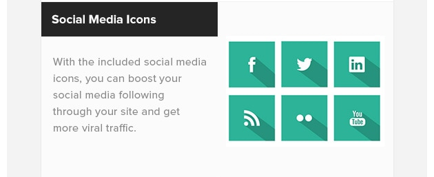 Social Media Icons. With the included social media icons, you can boost your social media following through your site and get more viral traffic.