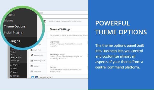 Powerful Theme Options