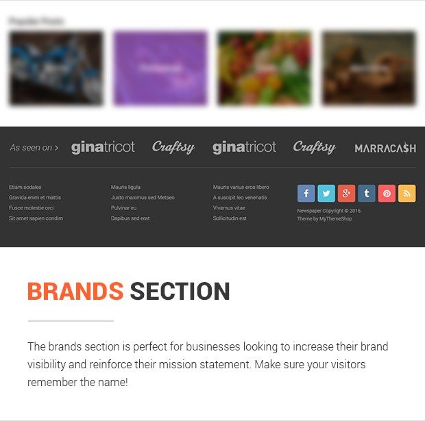Brands Section