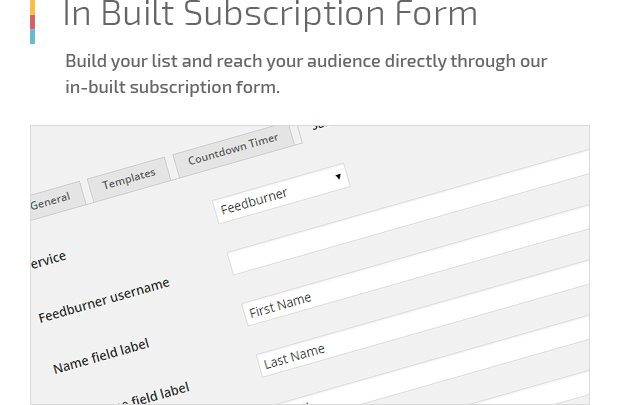 In Built Subscription Form