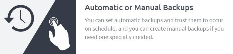Automatic or Manual Backups