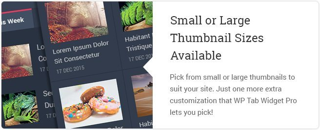 Small Or Large Thumbnail Sizes Available