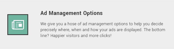 Ad Management Options
