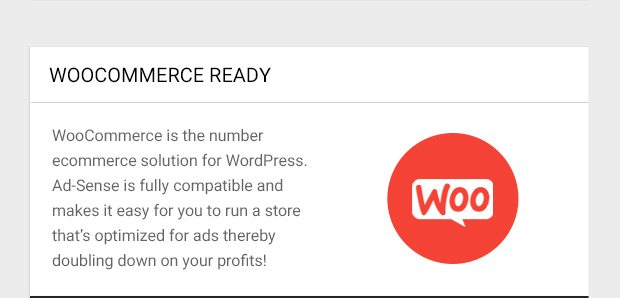 WooCommerce is the number ecommerce solution for WordPress. Ad-Sense is fully compatible and makes it easy for you to run a store that's optimized for ads thereby doubling down on your profits!