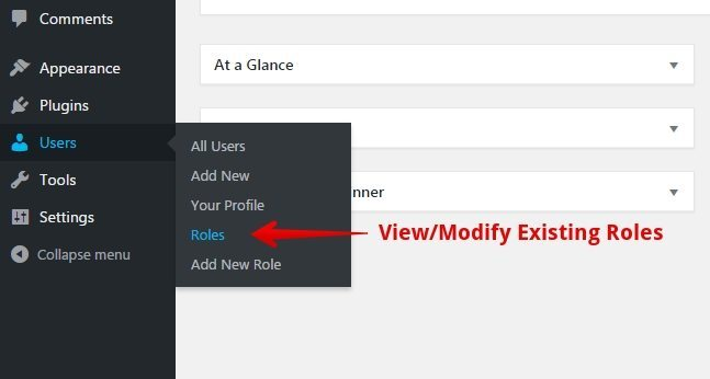 View Existing Roles