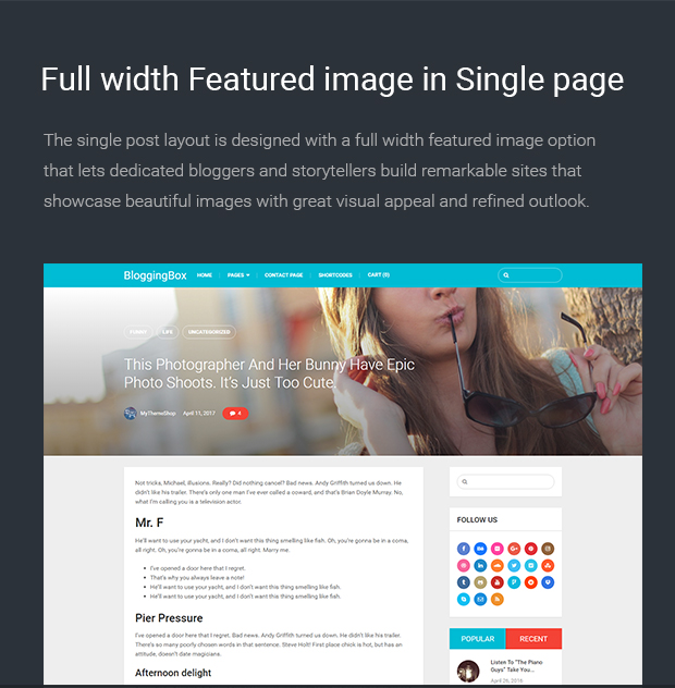 Full width Featured image in Single page