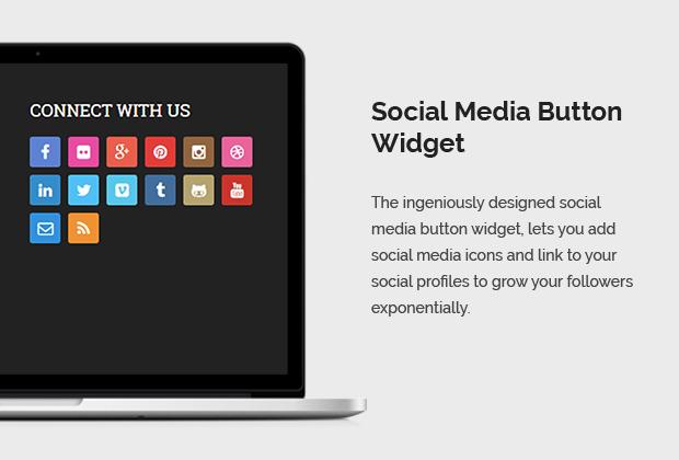 Social Media Button Widget