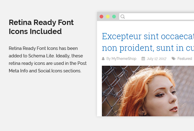 Retina Ready Font Icons Included